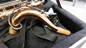 Brass Instrument TENOR SAX
